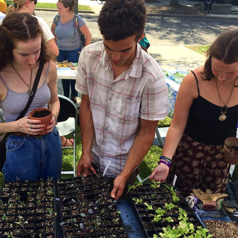 students planting in small planters