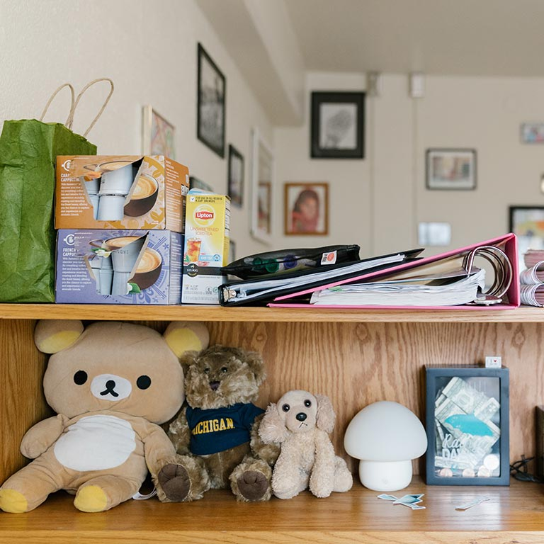 dorm room desk and shelf with stuffed animals and coffee supplies
